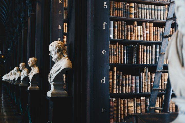 biblioteca con busti di marmo
