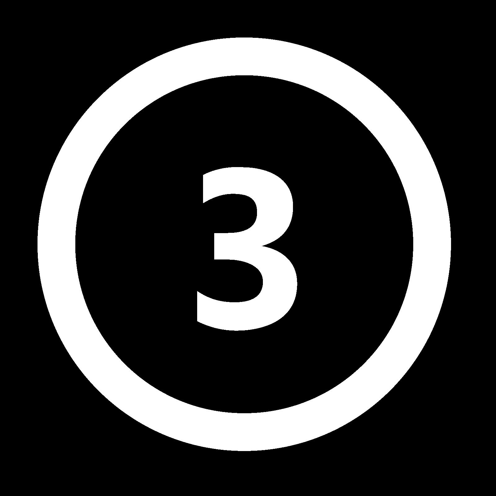 icona 3