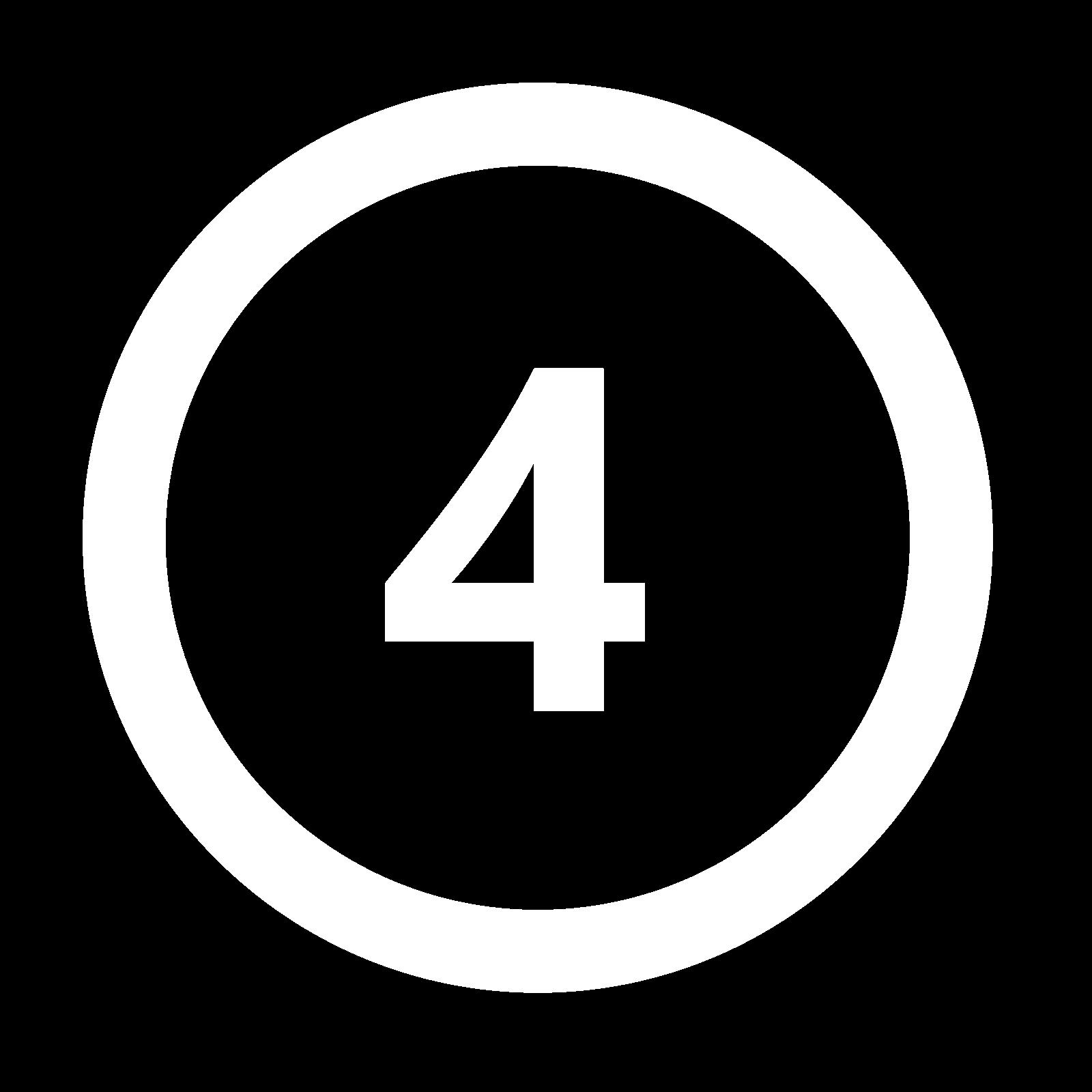 icona 4