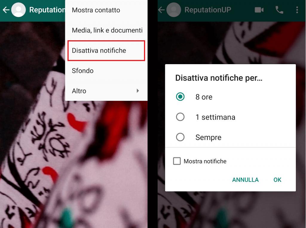disattivare notifiche whatsapp reputationup