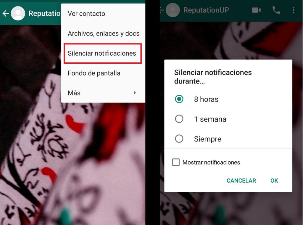 Cómo desaparecer de Whatsapp guia silenciar ReputationUP